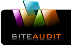 Consultanta in comert electronic si audit de site-uri